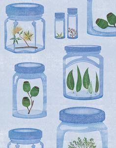 Illustration by Bindy James