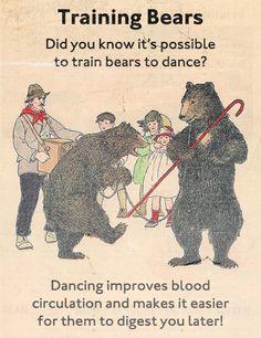 Training Bears
