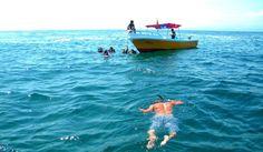 buzo en el mar. Playas de Ecuador by Johnny Chunga on 500px