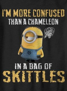 I'm more confused than a chameleon in a bag of Skittles - minion