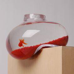 Create GB - Psalt Studio // on the edge goldfish bowl #product_design