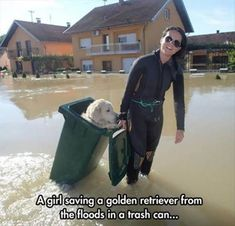 Faith In Humanity Restored - 25 Images Respect, Animal Rescue, Funny Gifs, Funny Videos, Funny Memes, Animals And Pets, Funny Animals, Cute Animals, Animal Memes