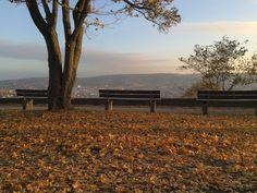 Stuttgart im Herbst! - Aufgenommen am 31. Oktober 2015 mit einem iPhone 6.
