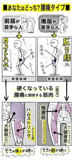 "Do you know ""Tight ham"" which is said to be a new cause of back pain? The abbreviation of the word hamstring [the muscle behind the thigh] that has become tight [stiff] has been introduced in ""Takeshi's Home Medicine"" [TV Asahi … Home Health, Health Diet, Health And Wellness, Health Care, Fitness Diet, Yoga Fitness, Health Fitness, Body Action, Home Medicine"