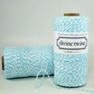 Aqua-Divine-Twine