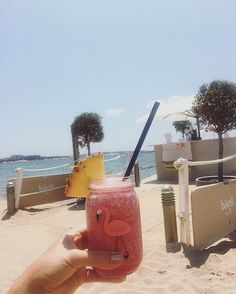 🌺 Golden Girl & Flamingo 🌺 | Coco - Raspberry - Pineapple | Detox on the…