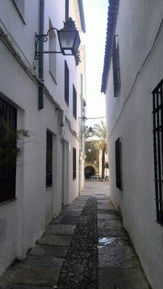 Calleja cerca de la Ribera
