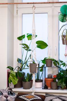 studio {hammel} planthanger. www.studiohammel.de  #studiohammel #planthanger #blumenampel #copper #macrame