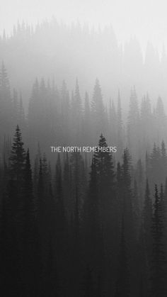 the north remembers // stark // game of thrones Funny Games are games that will make you laugh out l Game Of Thrones Tumblr, Game Of Thrones Quotes, Game Of Thrones Funny, Game Of Thrones Tattoo, Game Of Thrones Dragons, The North Remembers, Jon Snow, Valar Morghulis, Phone Backgrounds