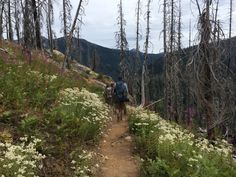 Spectacle Lake, WA. 9 mi, 2900 ft elevation. Amazing climb up to a sapphire blue mountain lake. The trail zig zags through a burnout lush with wild flowers, possibly my favorite WA hike yet. August 27 2016