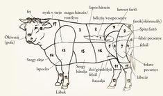 Marha bontása T Bone Steak, Limousin, Kitchen Hacks, Food To Make, Food And Drink, Google, Yum Yum, Xmas, Cook