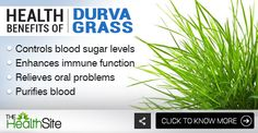 Click on the picture to know more! :) #DurvaGrass #HealthBenefits Lord Ganesha, Health Benefits, Grass, Conditioner, Herbs, Food, Herb, Grasses, Meals