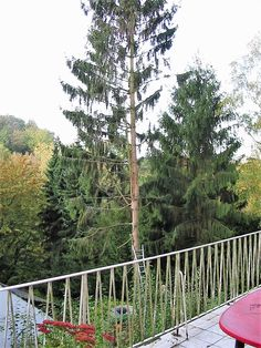 Baum fällen in Stücken Outdoor Furniture, Outdoor Decor, Home Decor, Garden Furniture Outlet, Interior Design, Home Interiors, Decoration Home, Yard Furniture, Garden Furniture