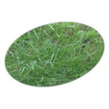 Patch of Grass Plates