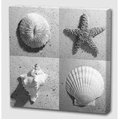 Menaul Fine Art 'Marine Life' by Scott J. Menaul Graphic Art on Wrapped Canvas Size: