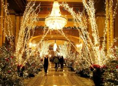 ELIOT RAFFIT Christmas in New York - Luxury Hotels