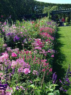 garden diaries