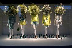 Paris shop windows