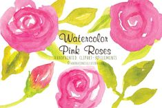 Image result for watercolor roses