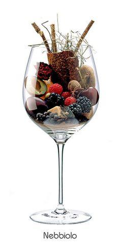 Descriptores aromáticos de la variedad Nebbiolo #WineUp #Vinos #Aromas #Copa