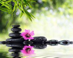Anahata es un espacio donde se respira un sentimiento de paz y armonía, donde podemos recuperarnos del estrés cotidiano o de un problema que nos lleva al agotamiento progresivo de nuestra fuerza vital. Este spa responde al deseo de paz, placer y serenidad de la sociedad actual que busca un ambiente donde cuidar su cuerpo y su espíritu hasta alcanzar un estado de total relajación y bienestar.