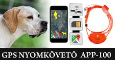 #gps #nyomkövető #kutya #vadász #vadászat #vadászkutya #hunter #hunting Mp3 Player, Dogs, Animals, Animales, Animaux, Pet Dogs, Doggies, Animal, Animais