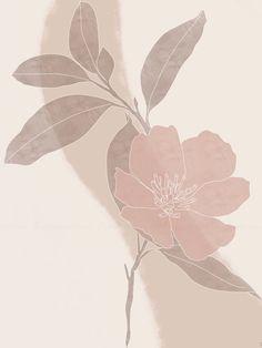 Minimalist Wallpaper, Minimalist Art, Flower Backgrounds, Wallpaper Backgrounds, Floral Wallpapers, Aesthetic Iphone Wallpaper, Aesthetic Wallpapers, Abstract Flower Art, Cute Patterns Wallpaper