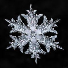 Snowflake-a-Day #17 by Don Komarechka - Photo 132686405 - 500px