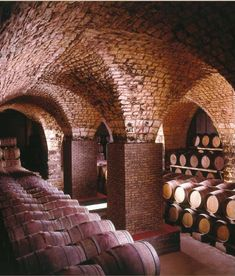 Last winter we started working on our basement, transforming it into a wine cellar. After some bad contractors and then being swindled by Ti...