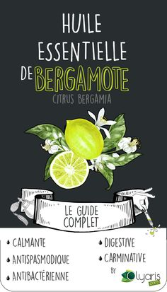 Bergamot Essential Oil: The Complete Guide How to choose it? All your answers on this Complete Guide to Bergamot Essential Oil, wit. Bergamot Essential Oil, Essential Oils For Skin, Young Living Essential Oils, Essential Oil Diffuser, Essential Oil Blends, Heath Care, Esential Oils, Skin Care, Chill Pill
