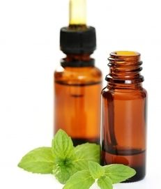 Spiders hate peppermint!  Put some peppermint oil in a squirt bottle with a…