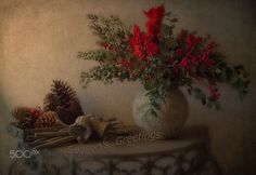 Season's Greetings - Wishing everyone a very Merry Christmas and wonderful New Year . And a huge thanks for all the support and lovely comments I have received during the year.. so very nice and so appreciated... warm greetings Hanna