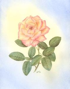 """""""Peach Rose""""©    Original Watercolor painting 16"""" x 20""""  Matted and Framed  $195.00  www.leonasart.com"""