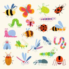 chenille inseto - Pesquisa Google