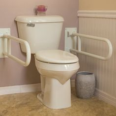 Floor mounted toilet safety rails installtoiletliftseat for Premier care bathrooms