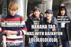 EXO ~~ Hahaha!! XD