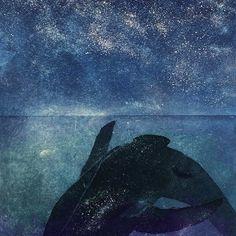 Sari Bremer -Stars and Shadows