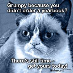 walsworth, yearbook, marketing, grumpy cat