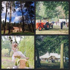 Wedding Shot At Happy Valley June