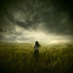 The Premonition by Michael Vincent Manalo