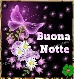 Italian Greetings, Good Night Gif, Funny Images, Creative, Google, Italy, Facebook, Good Night Msg, So True