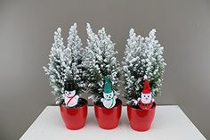 Snowy Dwarf Christmas Trees - Wonderful winter decoration or Christmas gift - Delivery in First week of December or before - A gift of snow for someone special - Ideal for use on desks, windowsills and tabletops - Ceramic potted tree with Christmas Characters or Cheerful snow trees - Lawson's Cypress Ellwoodii (1, Decorated Ceramic): Amazon.co.uk: Kitchen & Home