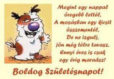 Birthday Greetings, Birthday Cards, Happy Birthday, Best Quotes, Nice Quotes, Folk, Snoopy, Teddy Bear, Funny