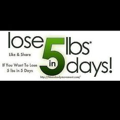Like & Share  If You Want To Lose 5 lbs in 5 Days for $15  Click Link In BIO  @_fitnessbodymotivation instagram @_fitnessbodymotivation instagram @_fitnessbodymotivation instagram  http://ift.tt/1INiwoI  #nutrition #gymlife #healthy #fit #fitness #workout #china #usa #detox #weightloss #fitfam #motivation #abs #squats  #fitmom #collegegirl #fitspro #bootcamp  #nutrition  #chicstudios #makeupschool #beautyjunkie #tlc #beauty #makeup #women #parenting #mom #uk