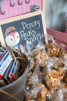 Sheriff Callie Inspired Birthday — The Well Styled Child