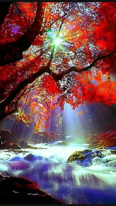 beautiful river fall the by beautiful fall by the riverYou can find Paysages magnifiques and more on our website Beautiful Nature Wallpaper, Beautiful Landscapes, Beautiful Images, Landscape Photography, Nature Photography, Amazing Photography, Autumn Scenes, Nature Tree, Nature Pictures