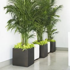 Crescent Garden Pandora Square Planter - All About