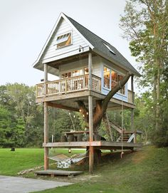 Apart of Camp Wandaweg, the three-story building includes tree swings and and a library, along with other cool surprises.