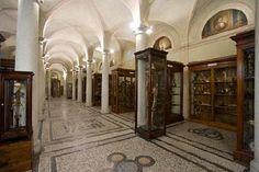 ANMS - Associazione Nazionale Musei Scientifici | MUSEO DI ANATOMIA UMANA