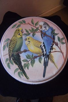 Budgie Themed PEAK FREAN Biscuit Tin